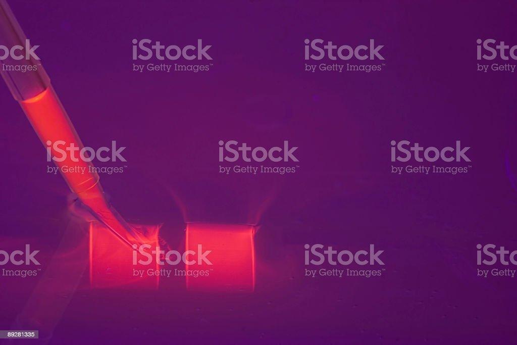 loading a DNA agaraose gel stock photo