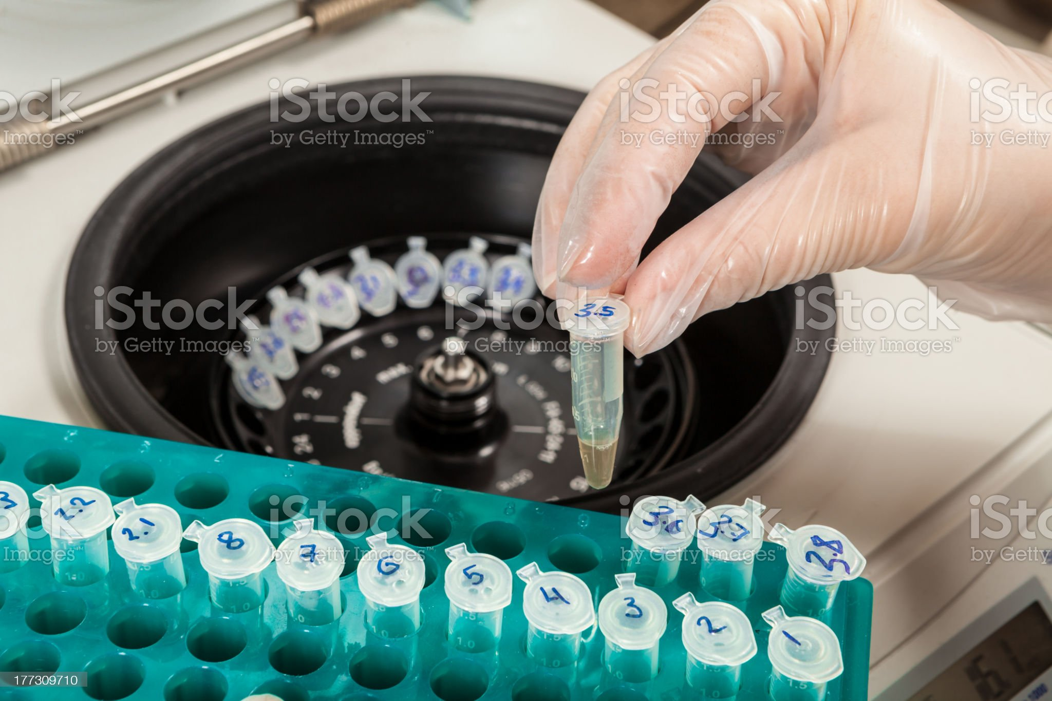 Loading a sample to centrifuge royalty-free stock photo