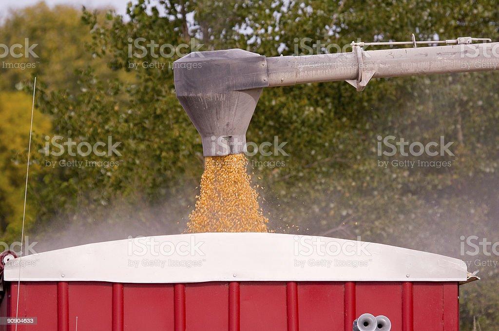 Loading Corn stock photo
