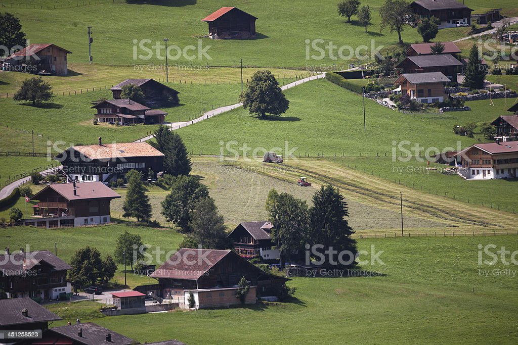 Loading fresh mown hay in summer, Swiss Alps royalty-free stock photo