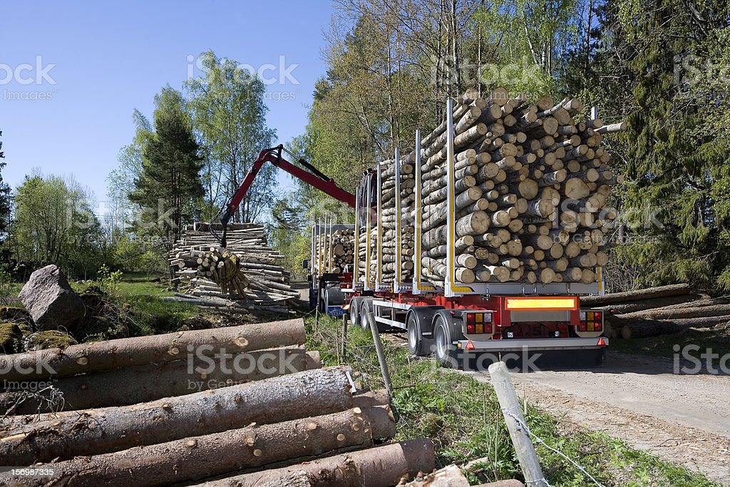 Loading Timber stock photo
