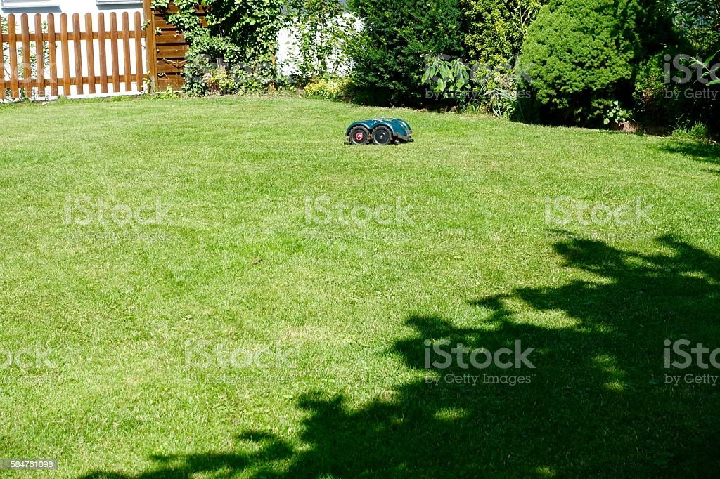 Loan mowing robot in backyard stock photo