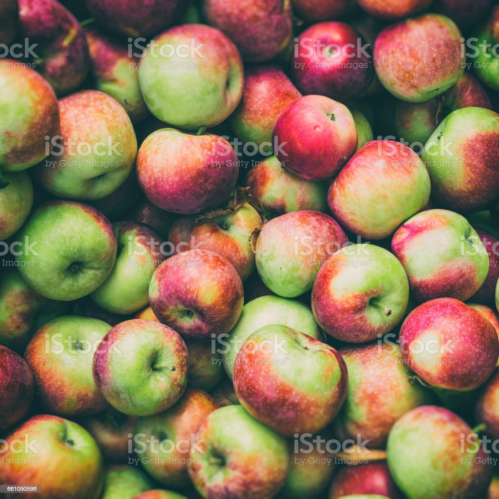 Lobo apples at the market with vintage effect stock photo