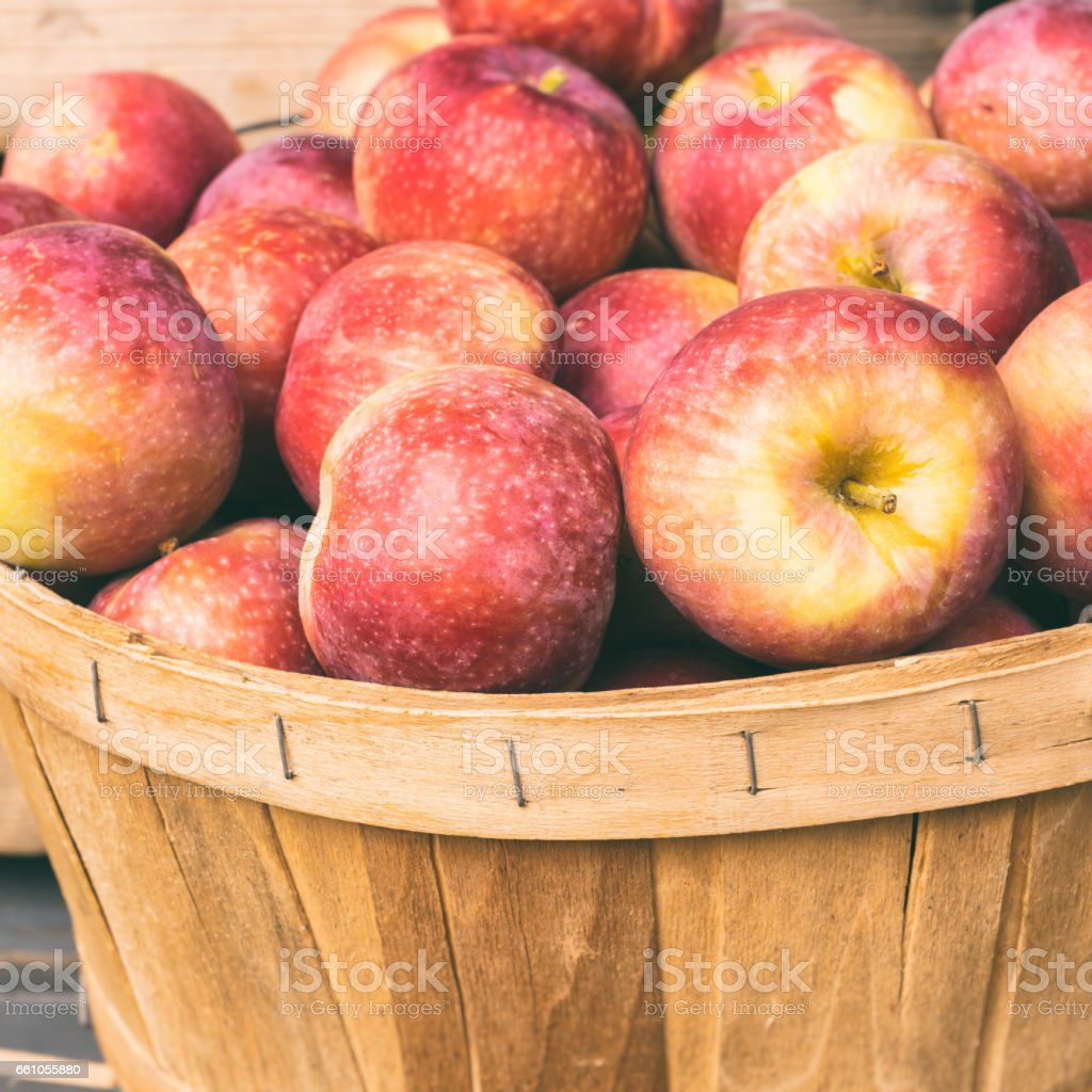 Lobo apples in a basket at the market with vintage effect stock photo