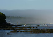 Lobster boats fogged in