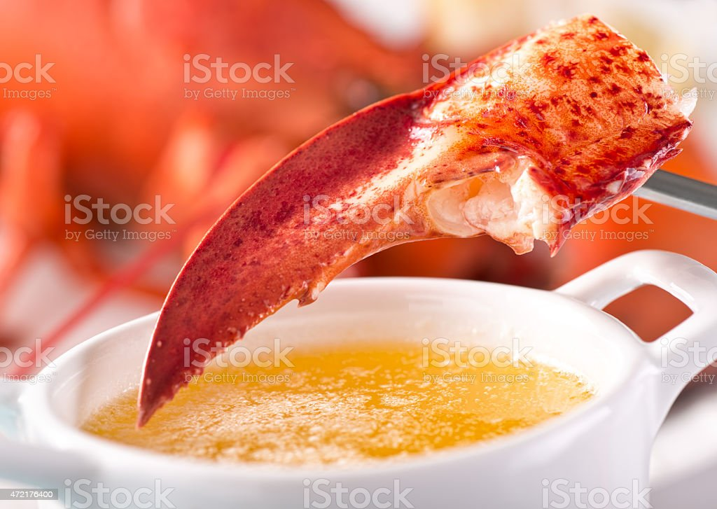 Lobster Claw with Melted Butter stock photo
