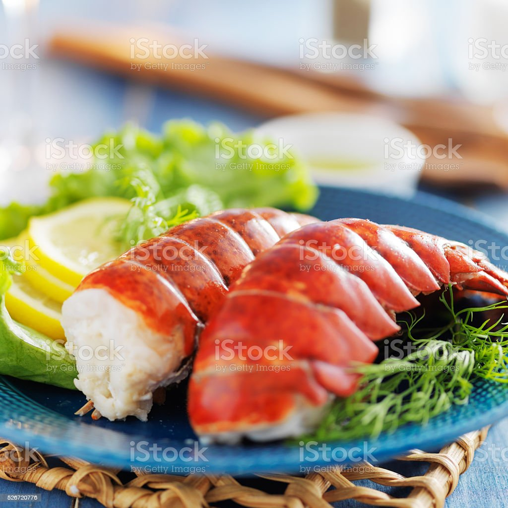 lobster dinner with lemon and lettuce stock photo