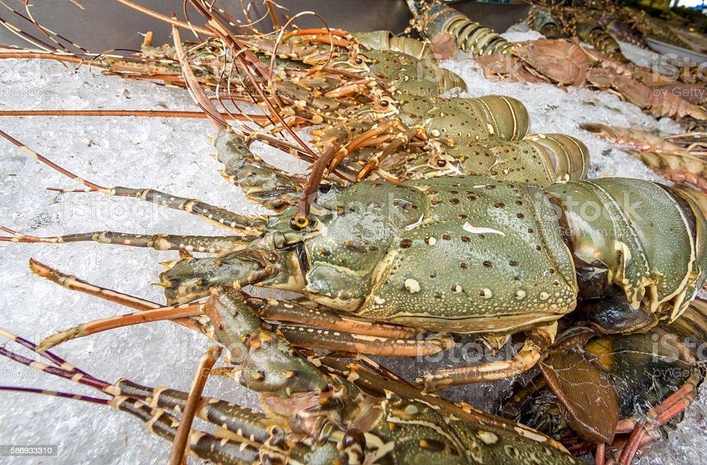 Lobster from Pattaya stock photo