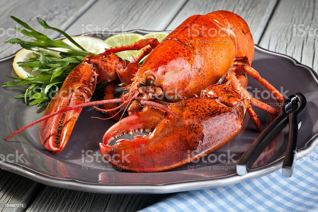 Lobster on plate royalty-free stock photo