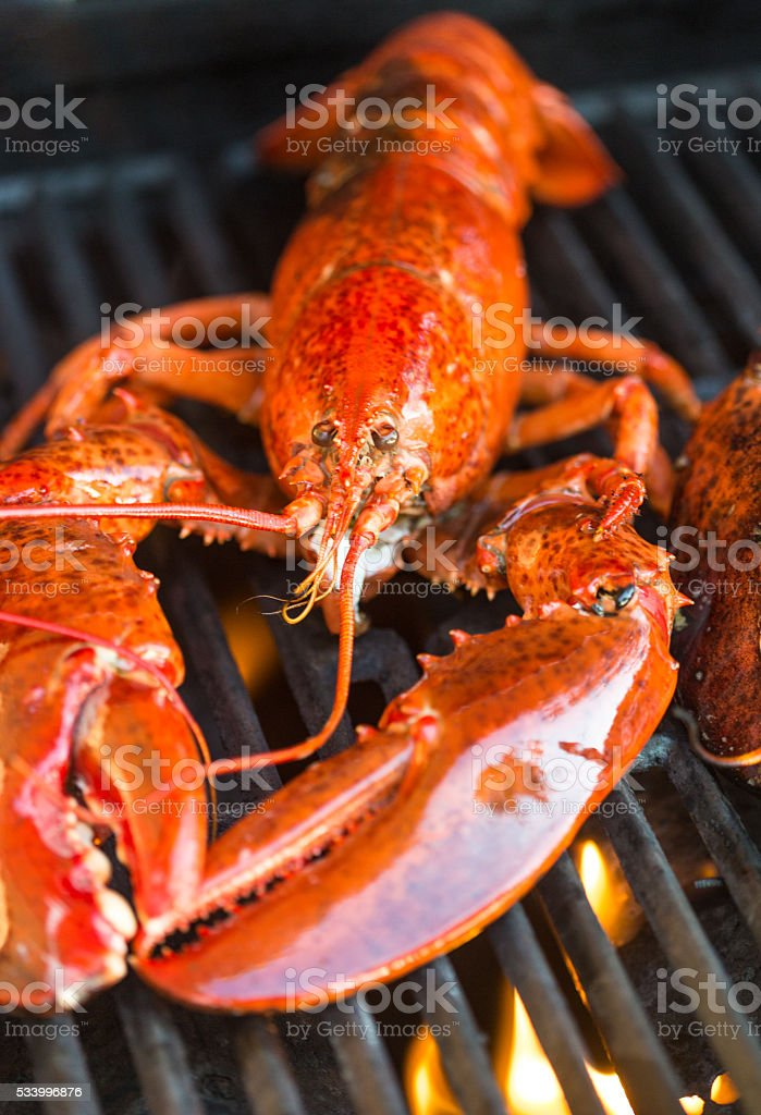 Lobster on the barbecue stock photo