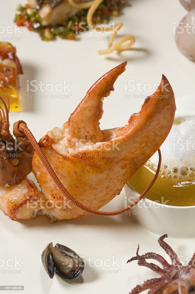 Lobster Pincer royalty-free stock photo