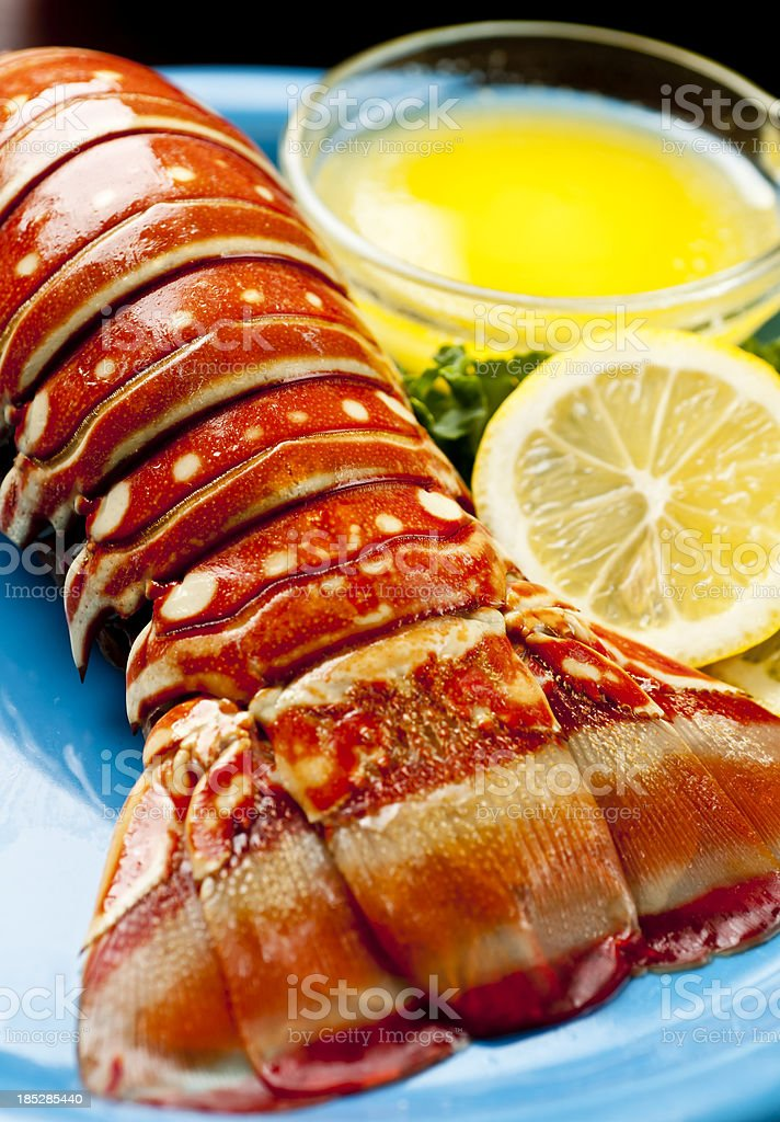 Lobster tail on blue plate with lemon and butter royalty-free stock photo