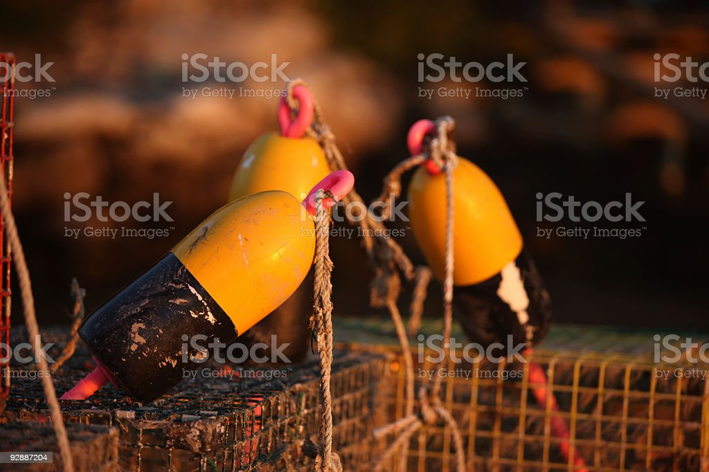 Lobster trap buoy close up at sunset light royalty-free stock photo