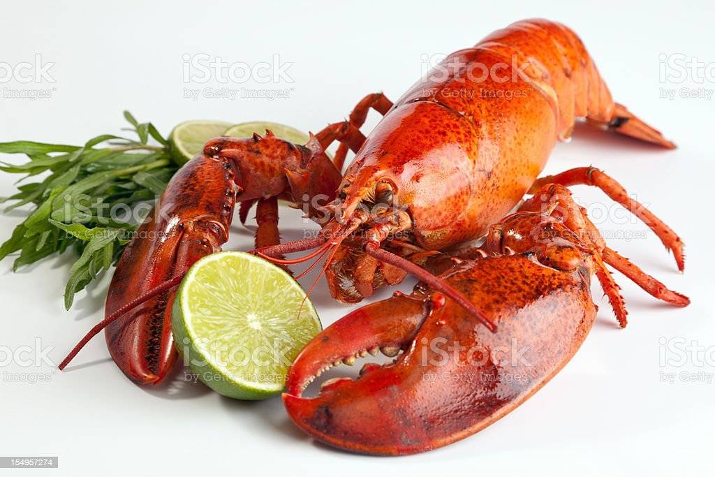 A lobster with lemon on a white background stock photo