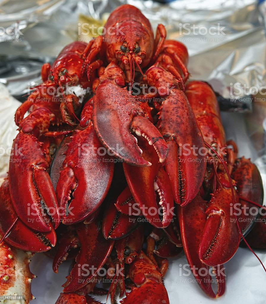 lobsters. royalty-free stock photo