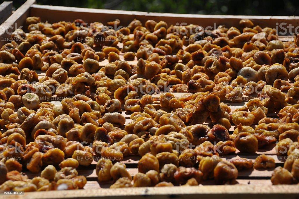 Local Albanian figs stock photo
