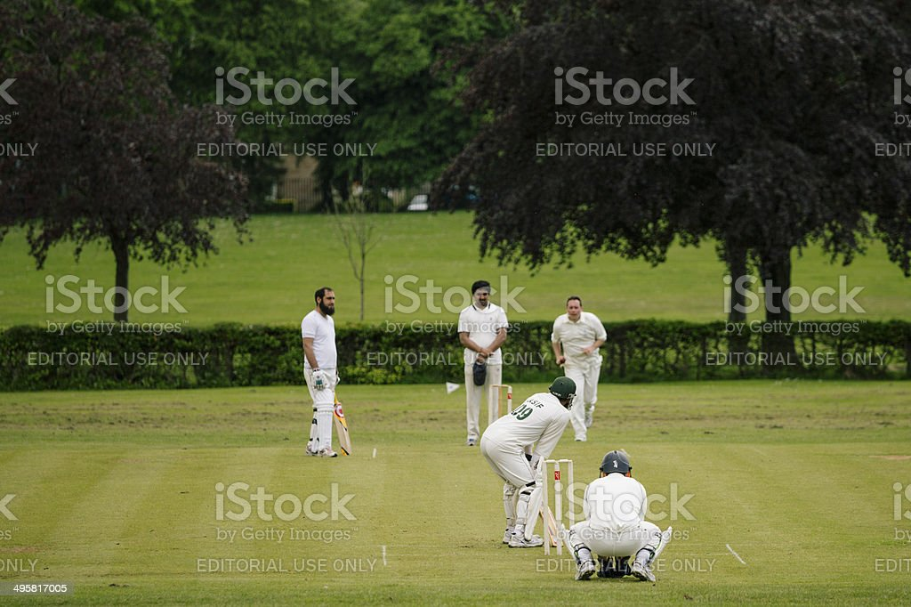 Local Cricket stock photo