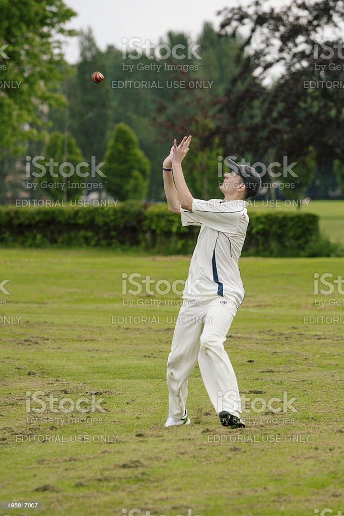 Local Cricket royalty-free stock photo