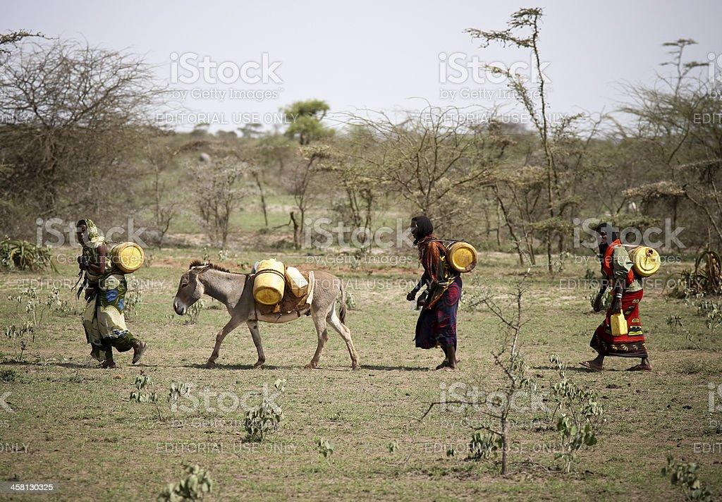 Local Ethiopian Women Transporting Water stock photo