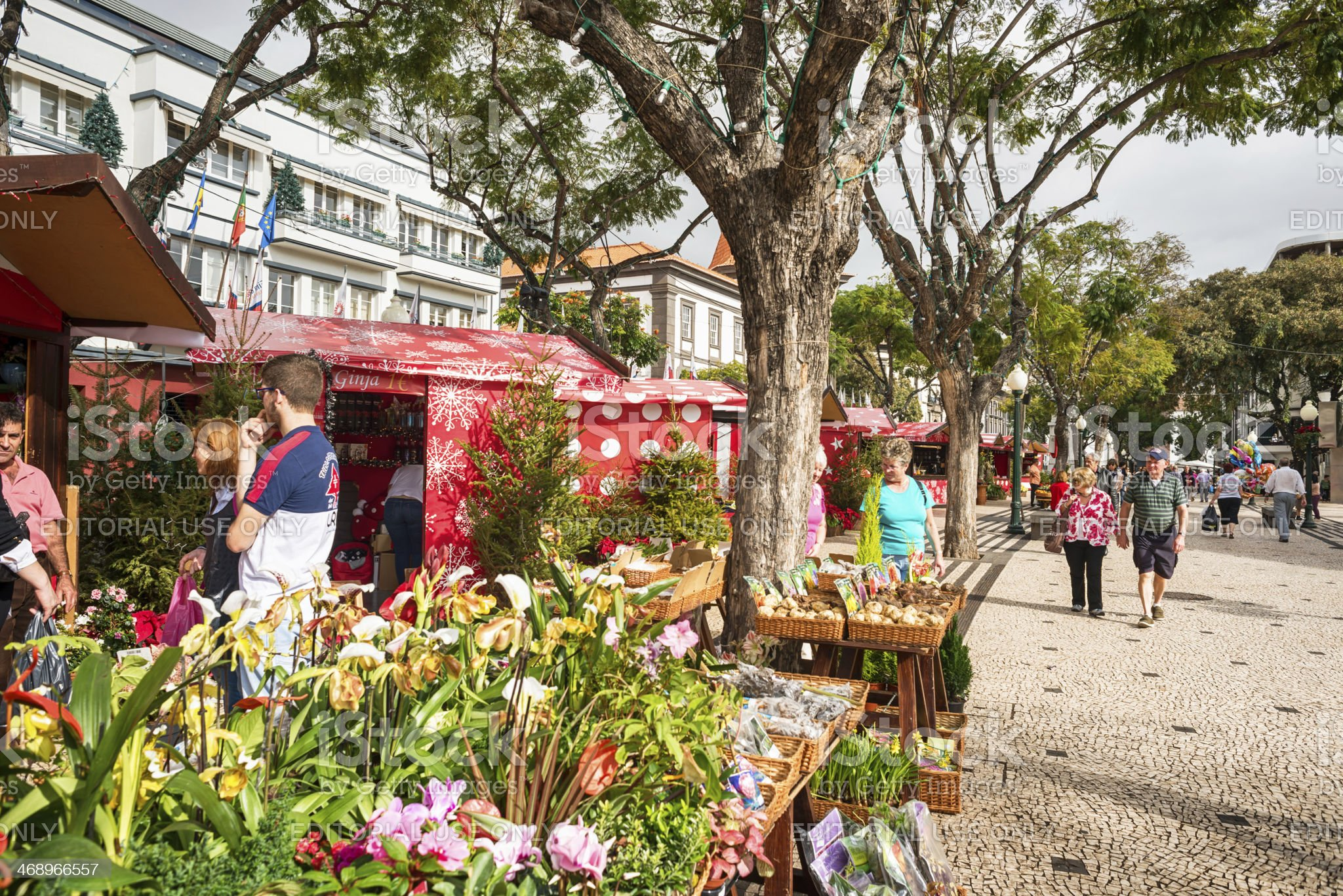 Local produce market of Madeira. royalty-free stock photo