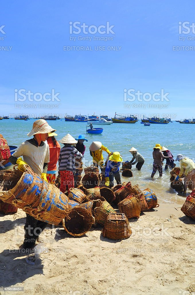 Local women are cleaning their fisheries baskets stock photo