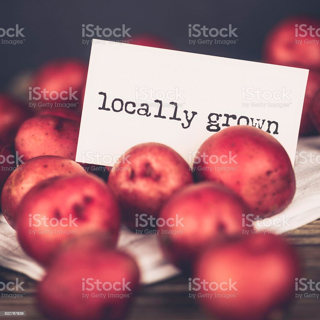 Locally Grown Organic Baby Red Potatoes royalty-free stock photo