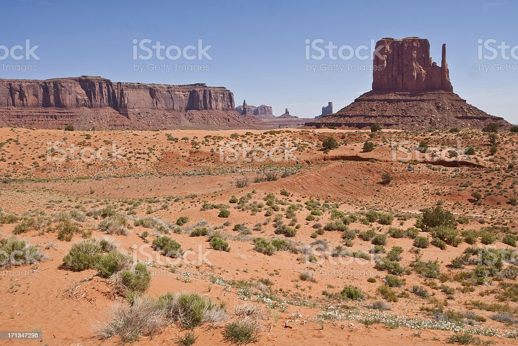 West Mitten and Sentinal Mesa stock photo