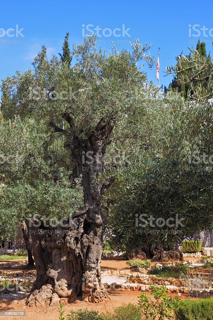 Location prayer of Jesus stock photo