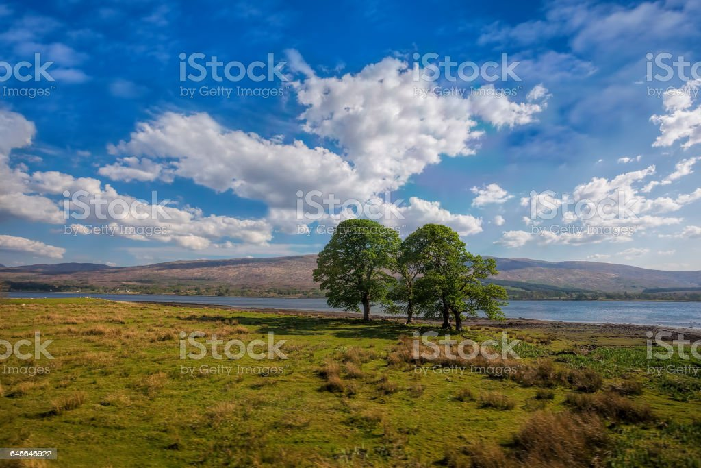 Loch Eil with trees near the Fort William in Scotland stock photo