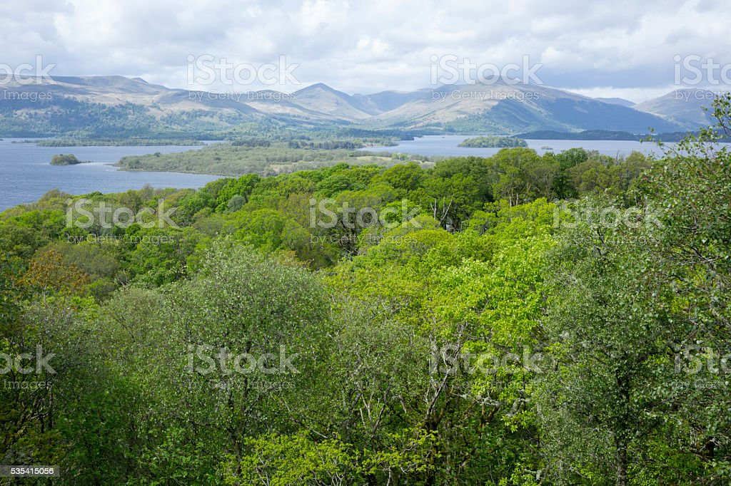 Loch Lomond from Inchcailloch stock photo