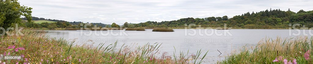 Lochwinnoch Nature Reserve royalty-free stock photo