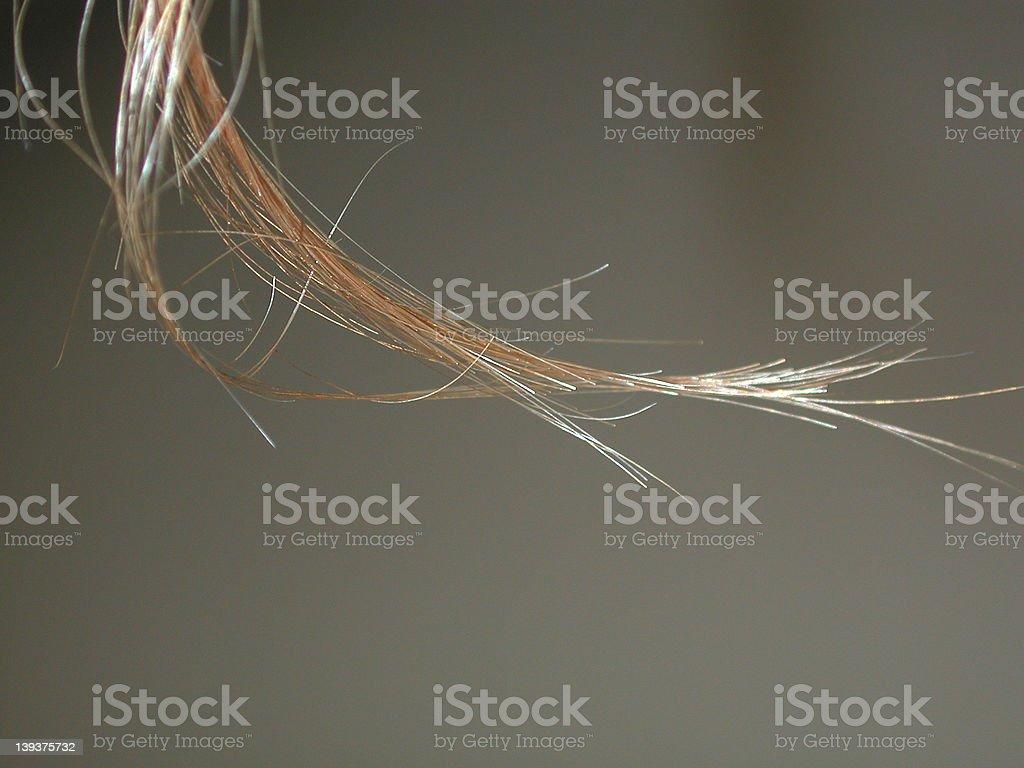 Lock of hair stock photo