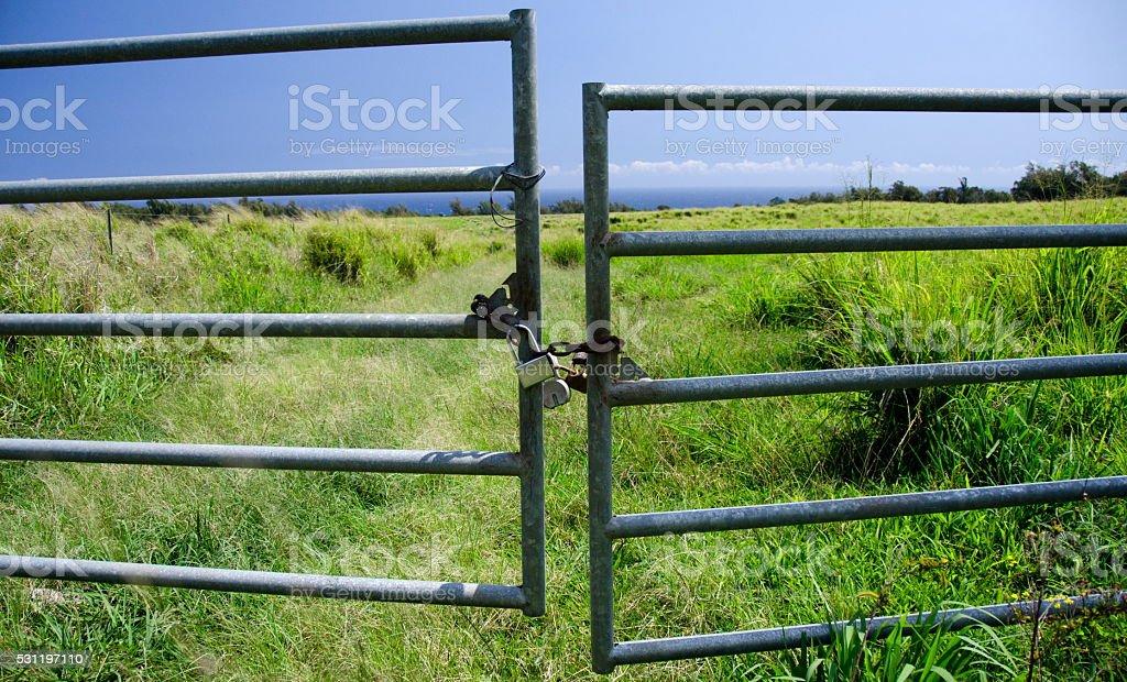 Locked Gates to a grass field near Keokea beac stock photo