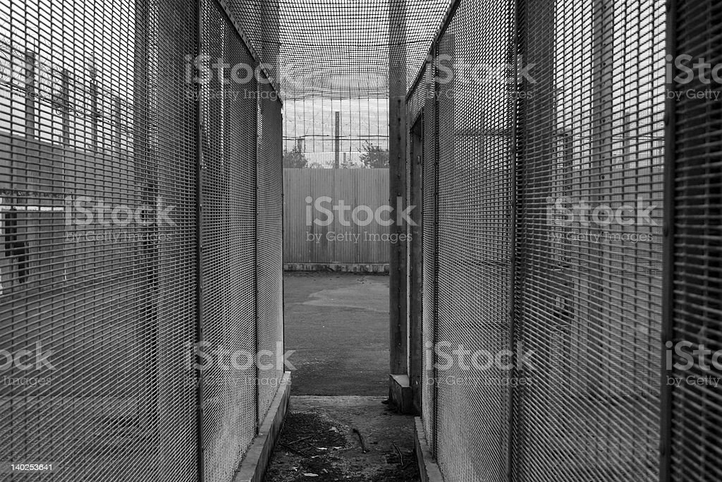 Locked In royalty-free stock photo