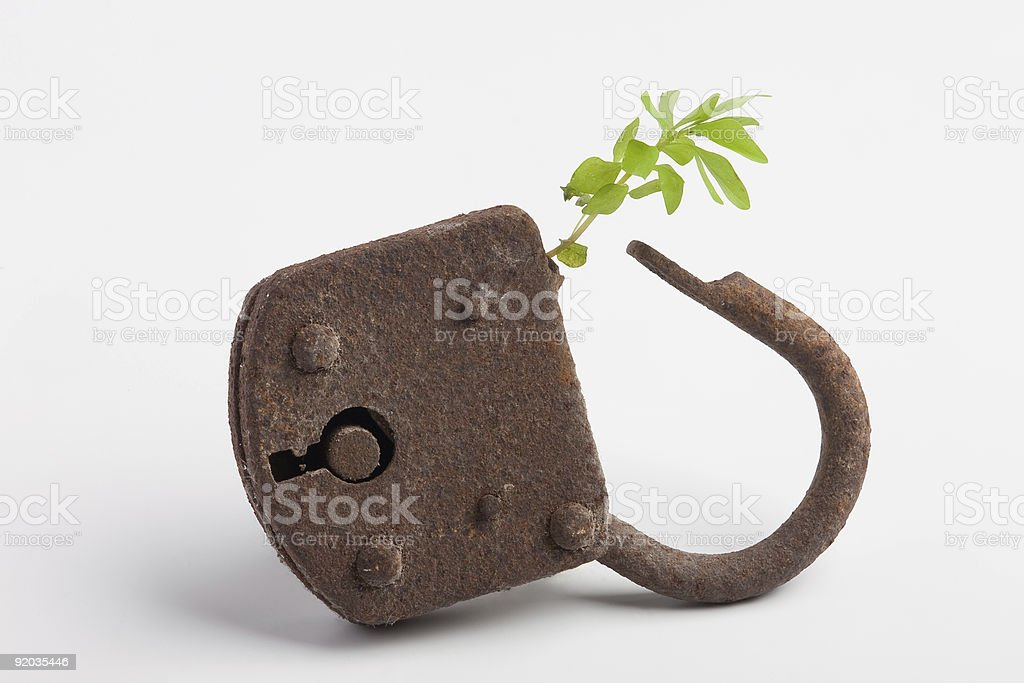 locked plant stock photo