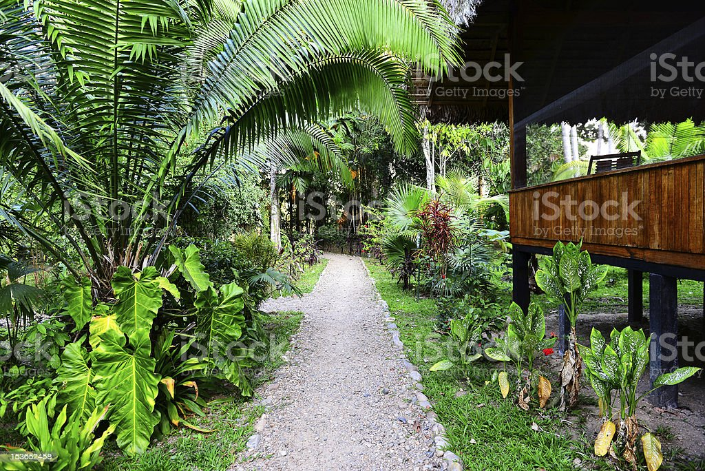 Lodge in jungles royalty-free stock photo
