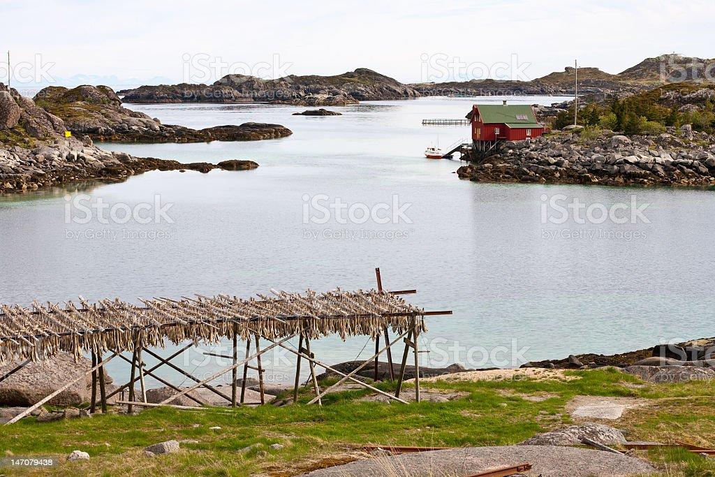 Lofoten archipelago stock photo