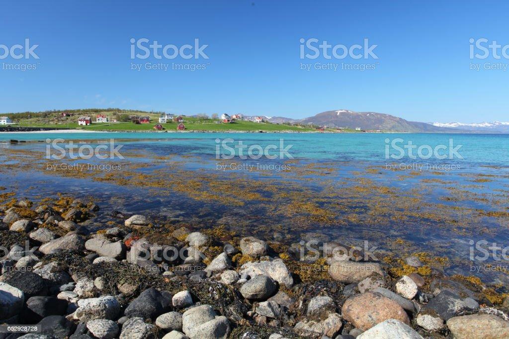 Lofoten blue coast stock photo