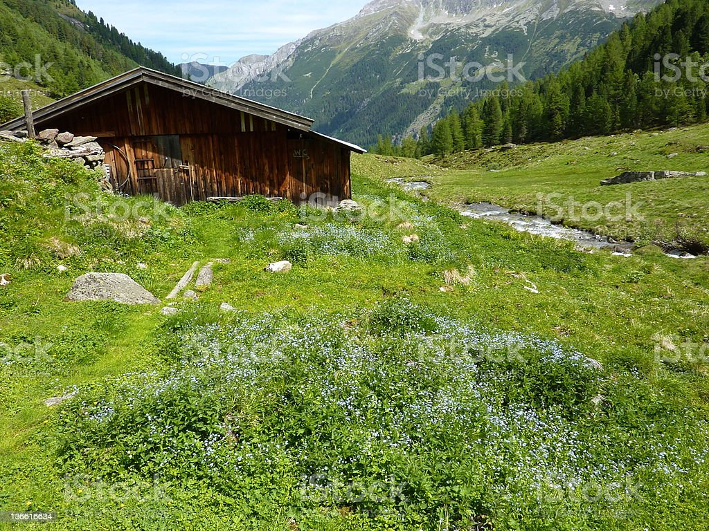 Log cabin on the meadow stock photo
