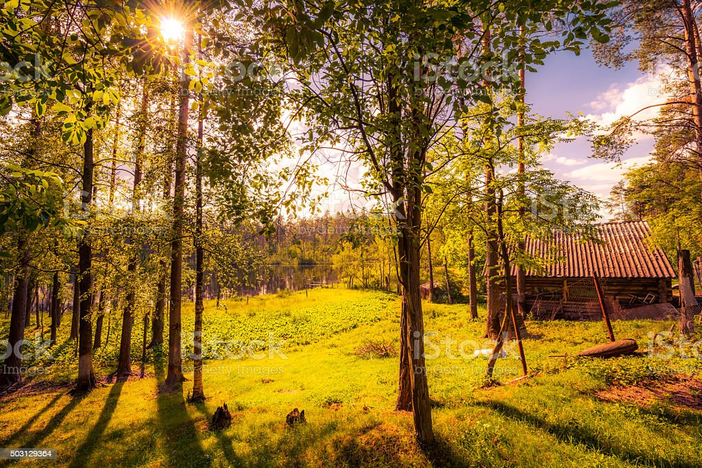 Log cabin on the shore of forest lake stock photo