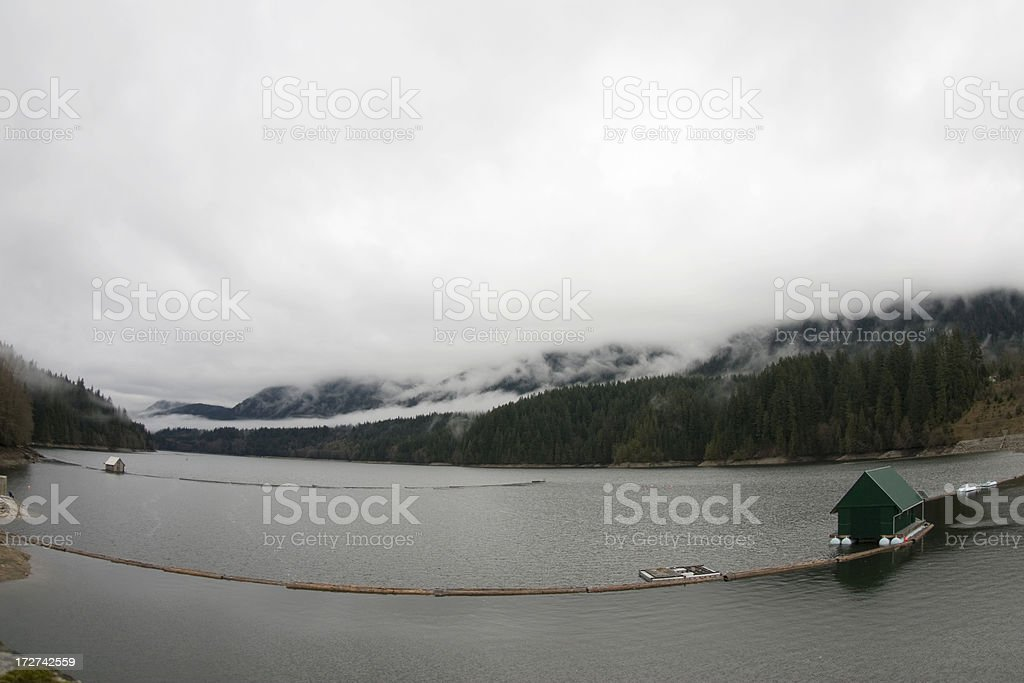 Log Catching on capilano lake stock photo