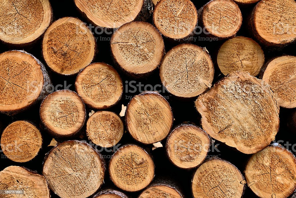 Log Deck royalty-free stock photo