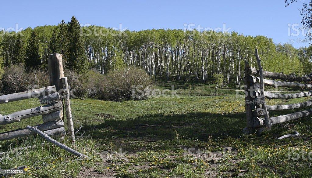 Log Fence royalty-free stock photo