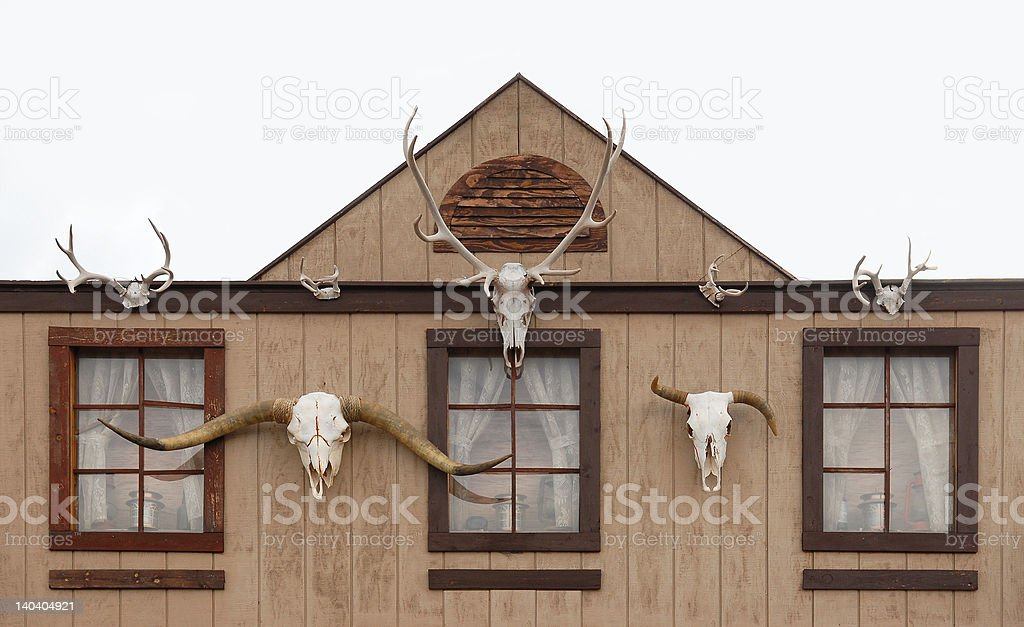 Log House stock photo