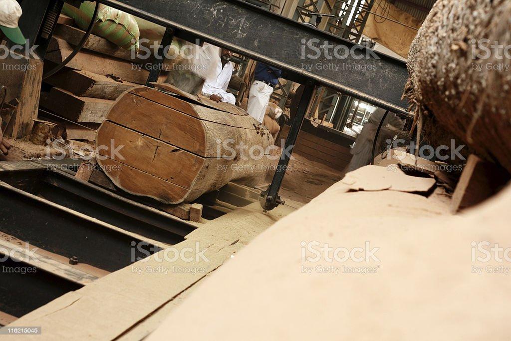 Log into Planks royalty-free stock photo