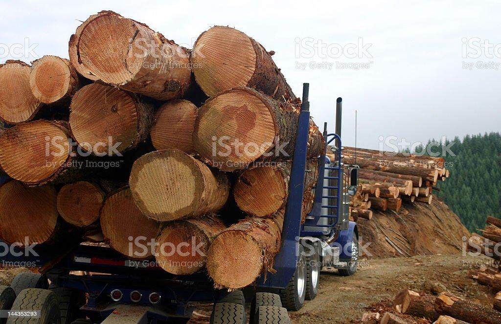 log load stock photo