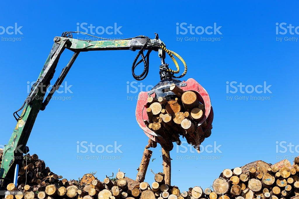log loader or forestry machine stock photo