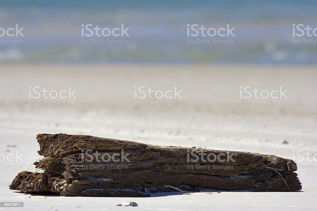 Log on a beach stock photo