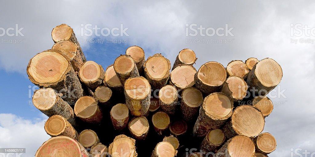 Log Pile montrer date de fin photo libre de droits