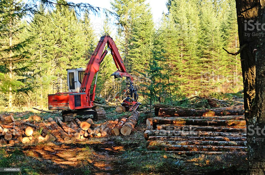 Log Processor stock photo
